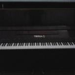 Пианино, Архангельск