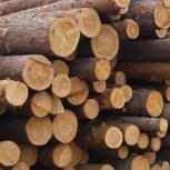 Продам  лес кругляк хвойный, Архангельск