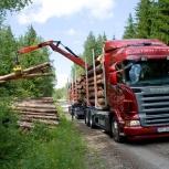 Аренда и услуги лесовоза, Архангельск