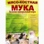 Мясокостная мука, Архангельск