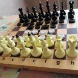 Шахматы  шашки, Архангельск