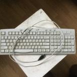 Клавиатура компьютера, Архангельск