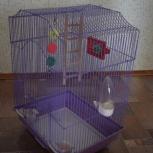 Клетка для птиц, Архангельск