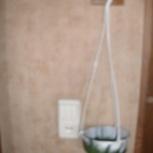 Кашпо - подвеска  для цветов, Архангельск